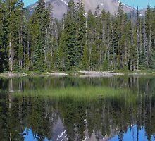 Reflections of McLoughlin by Thundercatt99