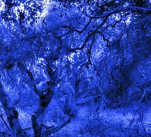 Composition With Gnarled Trees and Tangled Branches in Electric Blue by Ivana Redwine