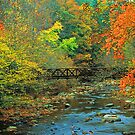 AUTUMN NEAR GATLINBURG TN.  by Chuck Wickham
