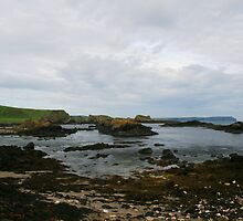ballintoy harbour by Kent Tisher