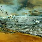 Flight of the seagulls by Anne Weirich