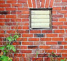Bricks in the Wall by Ritva Ikonen