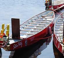 Dragon Boat race in Burlington, VT by Wanda Dumas