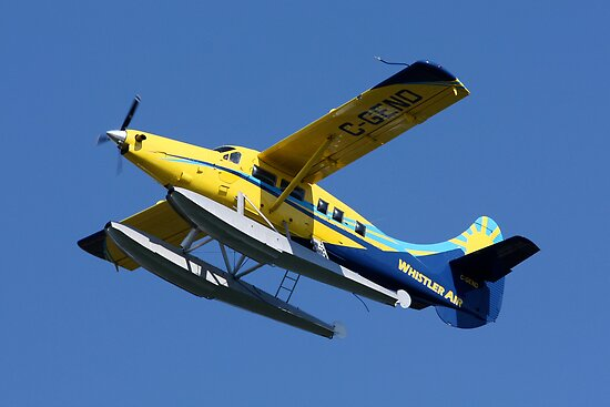Mechanical Bird: DeHavilland DHC-3 Turbine Single Otter by Wolf Read
