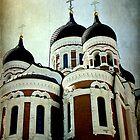 Alexander Nevsky Cathedral  by Jonicool