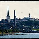 Tallinn Skyline by Jonicool