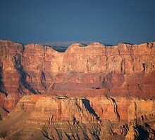 Sun Drenched Grand Canyon by Barbara Burkhardt