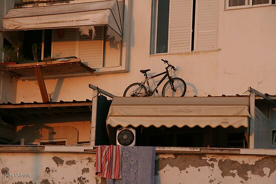 The Bicycle  by Nira Dabush