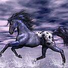 Blue Roan Appaloosa by Walter Colvin