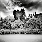Buchanan Castle by Mark Jones