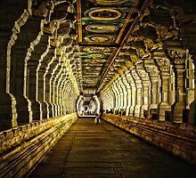 1000 Pillars by liamcarroll