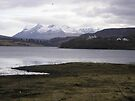 View From Portree, Isle Of Skye, Scotland by MagsWilliamson