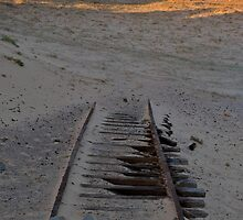 Tracks in the Sand by Andrew Murrell