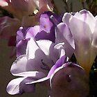 Pale Watercolor Purple by Fay270