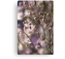 In the autumn (from wild flowers collection) Canvas Print