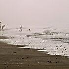 Fun in the Fog by Sarah Jones