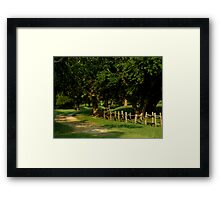 The Inspiring Path Framed Print