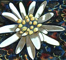 182 - EDELWEISS - DAVE EDWARDS - GOUACHE & COLOURED PENCILS - 2007 by BLYTHART