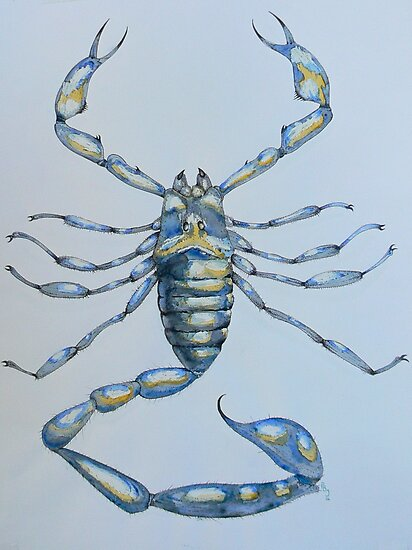Scorpion Scorpio Arachnid Blue, 2006 by Pete Janes
