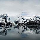 Alaska ~ The Last Frontier by Barbara Burkhardt