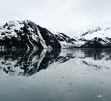From a Dream ~ Kenai Fjord by Barbara Burkhardt