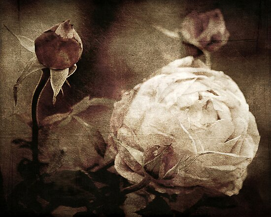 Vintage Memories by Trish Mistric