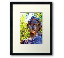 Tears Framed Print