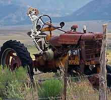 Overworked Farmer by CarolM