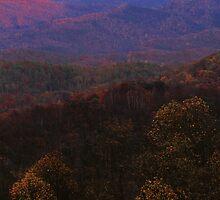 MT LECONTE, SUNSET by Chuck Wickham
