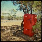 fridge in the outback-deux by Sonia de Macedo-Stewart