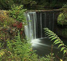 Cedar Cliff Falls  by kathy s gillentine