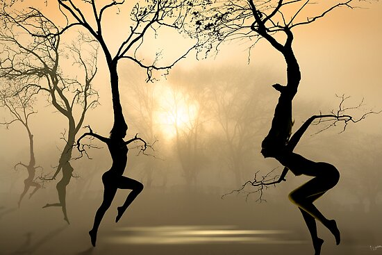 Dancing Trees by Igor Zenin