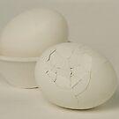 Eggs by Mukesh Srivastava