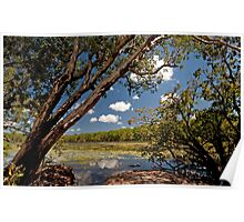 Sweetwater Lagoon, Lakefield National Park Poster