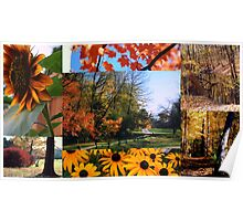 The Colors Of Fall Poster