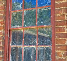 Cob-webbed Window, Monte Christo, Junee, NSW, Australia (HDR) by Adrian Paul