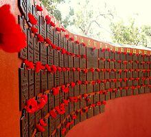 Red Poppy Wall by Vanessa Barklay