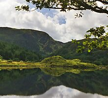 Gougane Barra Lough by WatscapePhoto