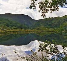 Gougane Barra Lough 2 by WatscapePhoto
