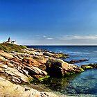Beavertail Lighthouse, Jamestown, Rhode Island by Judith Winde