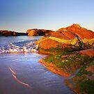 South West Rocks by David  Hibberd