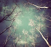 Toward Heaven by Cathleen Tarawhiti