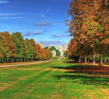 The Long Walk Windsor - HDR by Colin J Williams Photography