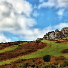 Haytor, Dartmoor, Devon by Squealia