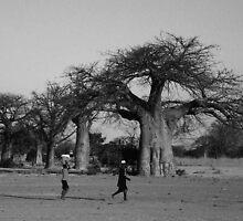 Baobab trees, Southern Lake Shore, Malawi by rinajoy