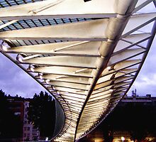 Campo Volantín footbridge, Bilbao, Spain by jmhdezhdez