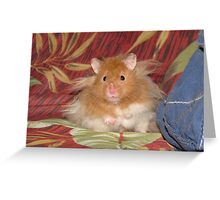 My name is Hamster Snuggles Greeting Card