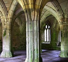 Valle Crucis Abbey  by Dale North Photography