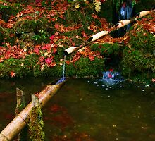 Butchart Gardens 13 by James Birkbeck