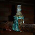 rusty bolt by georgeisme